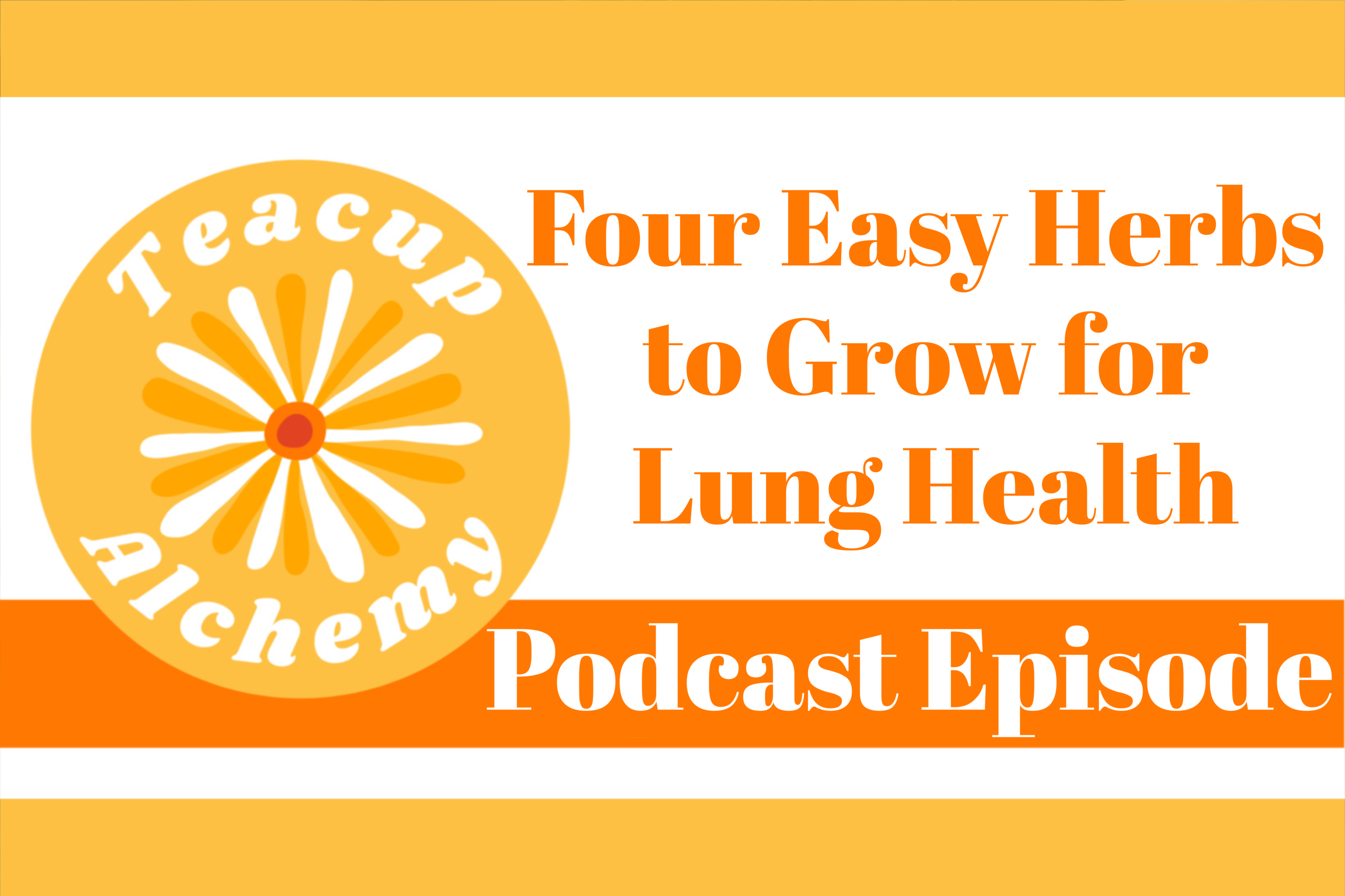 Podcast: 4 Easy Herbs to Grow for Lung Health